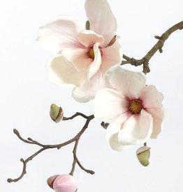 Magnolia x2 pick, 48cm