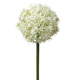 """Alliumbol bloeiend """"grande"""" 76cm"""