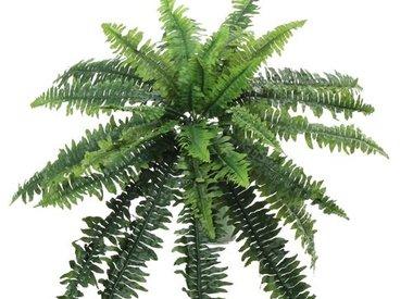 Artificial Ferns
