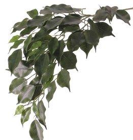 "Ficusbranch ""Exotica"" x3, 61lvs, 77cm, FIRE RETARDENT"
