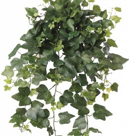 English Ivy hedera Gala x 262 65cm UV-safe