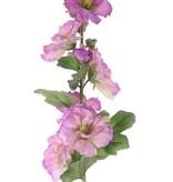 """Alcea Rosea (Stokroos) """"Spring Dream"""" x9blm, 7knp& 9bld, geflockte steel 87cm"""
