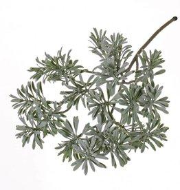 Artemisia absinthum spray full plastic 45cm