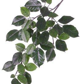 Beech branch (Fagus Sylvatica) x43 lvs. (9/ 7/ 6/ 3,5cm), 65cm, fire retardant