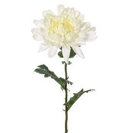 """Ball chrysanthemum """"New Art"""" ,Ø 16cm with 3 leaves, 76cm"""