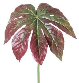 Fatsia leaf (Finger plant) ø33cm