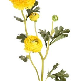 "Ranunculus Spray ""Glory"", x4, x3flrs, x4buds & 11lvs, flocked stem, 65cm"