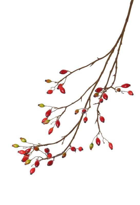 hundsrose heckenrose rosa canina mit 41 fr chten 109cm seidenblumen top art int. Black Bedroom Furniture Sets. Home Design Ideas