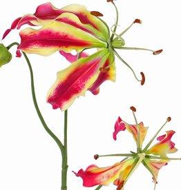 "Lelie gloriosa ""Liv"", 3 Blumen,  1 Knospe,  80cm"