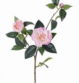 """Cameliatak """"de luxe"""", 2 bloemen, 1 knop"""