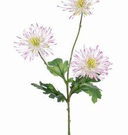 """Chrysant """"spider"""" met 3 bloemen & 4 bladeren, 73cm"""