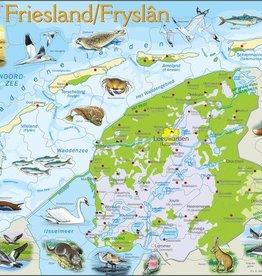 Larsen Puzzel Friesland natuurkundig