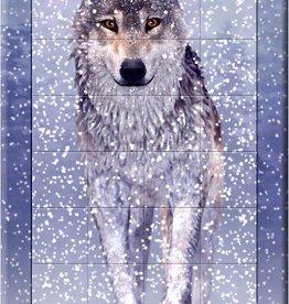 Cheatwell 3D Sneeuwwolf