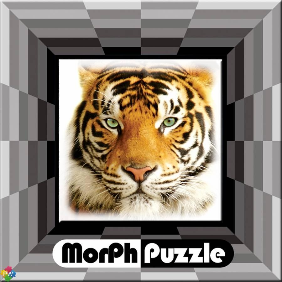 Cheatwell Magic Morph Puzzel Katten (8-108 jaar)