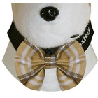 Doxtasy Bow Tie Black Stripes