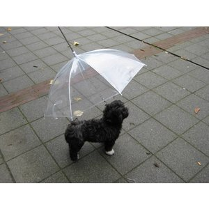 Petsonline Hondenparaplu