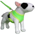 Doxtasy Round Loop Dog Harness Mesh Fluo Green