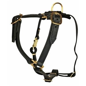 Dean and Tyler Dog Harness Tyler's Choice