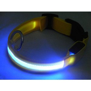 Petsonline Blue led dog collar