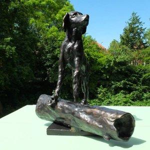 Petsonline Bronze urn for dog