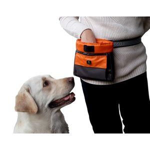 EQDOG Reward bag Click and Treat Orange