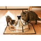 Petsafe Drinking Fountain 360 stainless steel