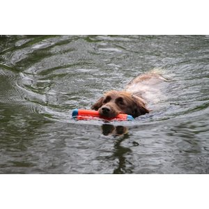 Chuckit Dog Toy Amphibious Bumper