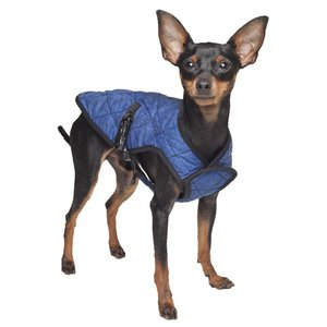 Aqua Coolkeeper Cooling Pet Jacket