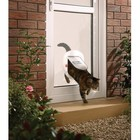 Petsafe Staywell Big Cat Flap Frosted