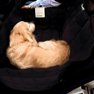 Doctor Bark Dog blanket for the back seat - two seats Black