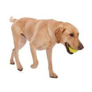 West Paw Design Dog Toy Zogoflex Jive Lime