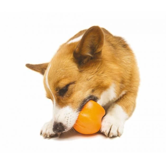 Afbeelding Zogoflex Toppl Treat Toy - Large - Orange door Petsonline