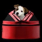 Sleepypod Pet Carrier Medium Red