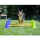 FitPAWS Canine Dog Agility Gym Kit