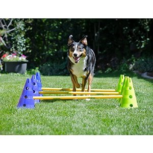 FitPAWS Canine Gym Dog Agility Kit