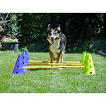 Agility en training