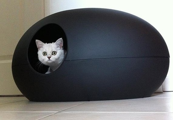 Large Cat Boxes With Lids
