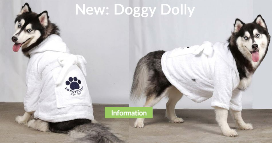 Doggy Dolly Dog Clothing