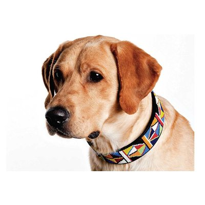 The Kenyan Collection Dog Collar Primary
