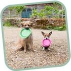 Beco Pets Drinkbak of voerbak Travel Bowl Groen