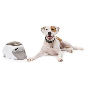 Petsafe Dog Trainer Treat & Train ®