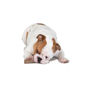 Petstages Dog Toy Dogwood