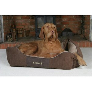 Scruffs Hondenmand Chester Chocolate