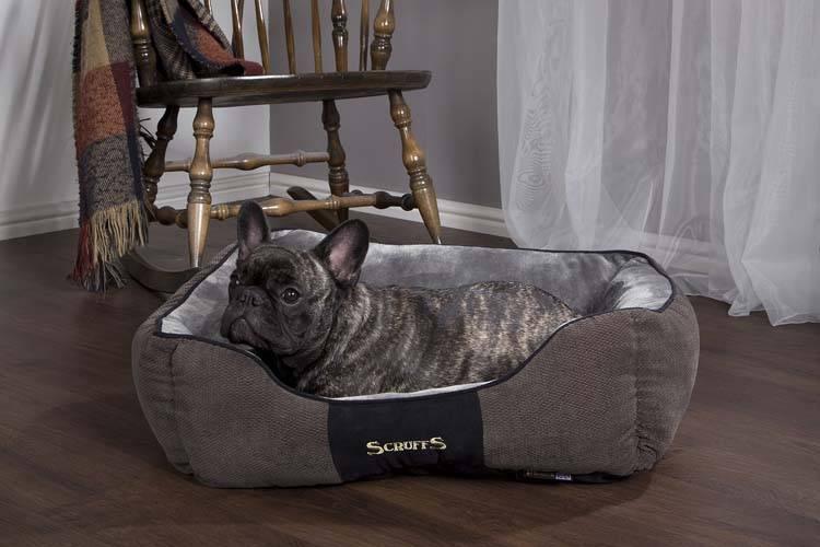 Hondenmand Chester Graphite