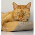 MyKotty Cat Furniture TOBI Brown