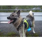 EQDOG Dog Backpack Pro Harness