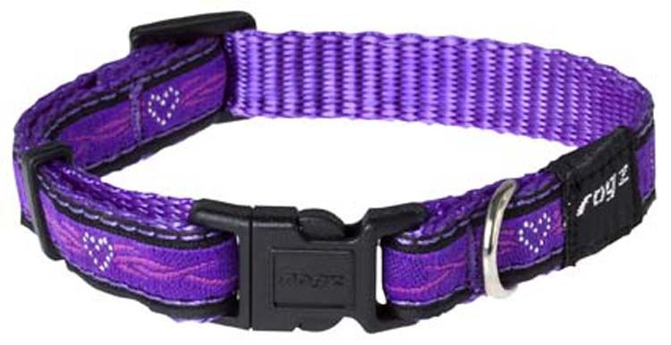 Hondenhalsband Purple Chrome