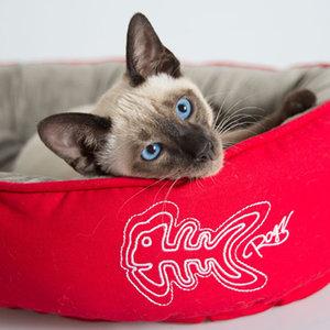 Rogz Cat Bed Podz Tango Fishbone