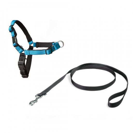 Anti Pull Dog Harness Pets At Home
