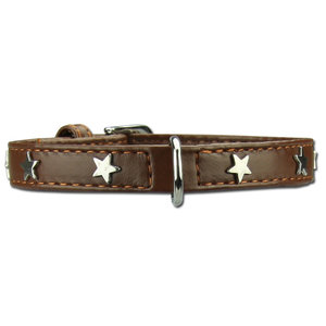 Doxtasy Dog Collar Twinkle Little Star Brown